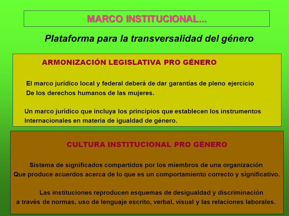 MARCO INSTITUCIONAL...