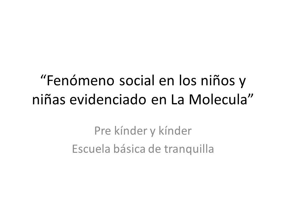 Fenómeno social en los niños y niñas evidenciado en La Molecula Pre kínder y kínder Escuela básica de tranquilla