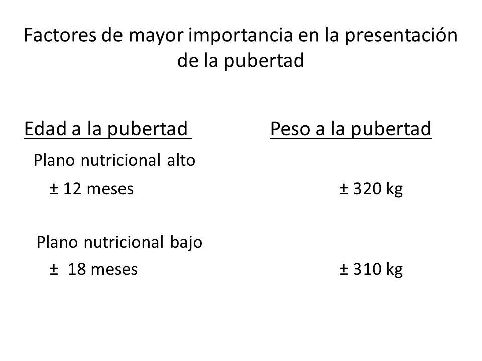 Edad a la pubertad Peso a la pubertad Plano nutricional alto ± 12 meses ± 320 kg Plano nutricional bajo ± 18 meses ± 310 kg Factores de mayor importancia en la presentación de la pubertad