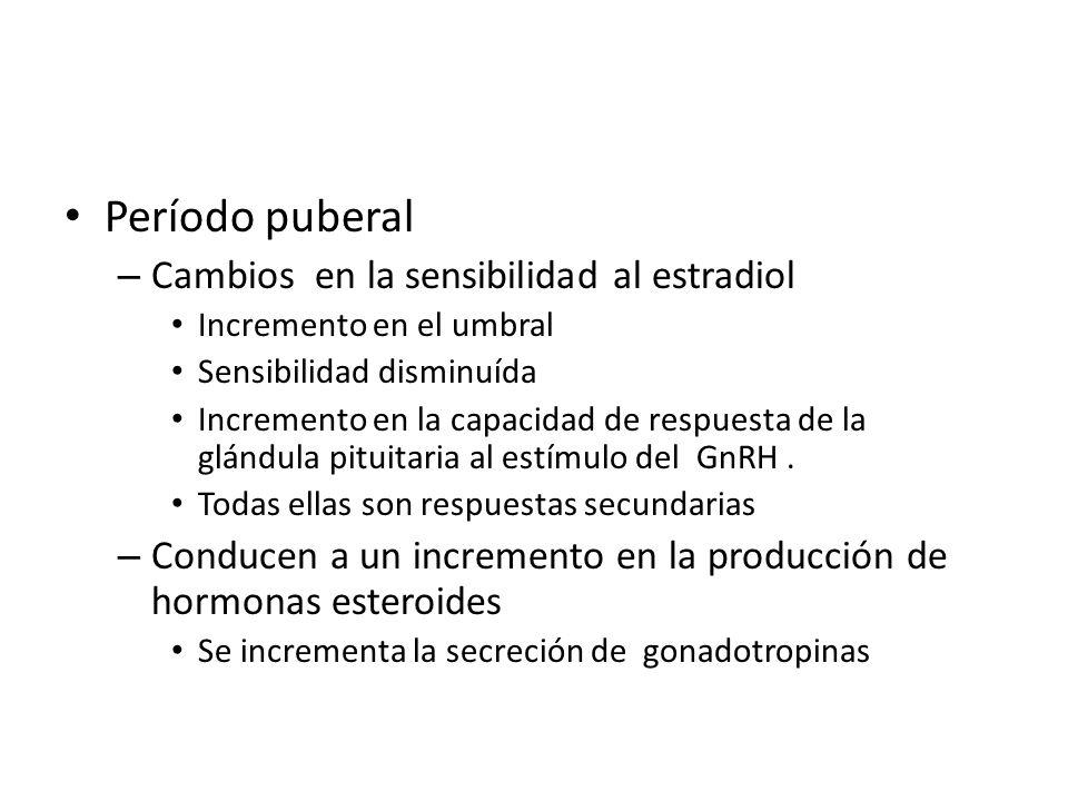 Período puberal – Cambios en la sensibilidad al estradiol Incremento en el umbral Sensibilidad disminuída Incremento en la capacidad de respuesta de la glándula pituitaria al estímulo del GnRH.