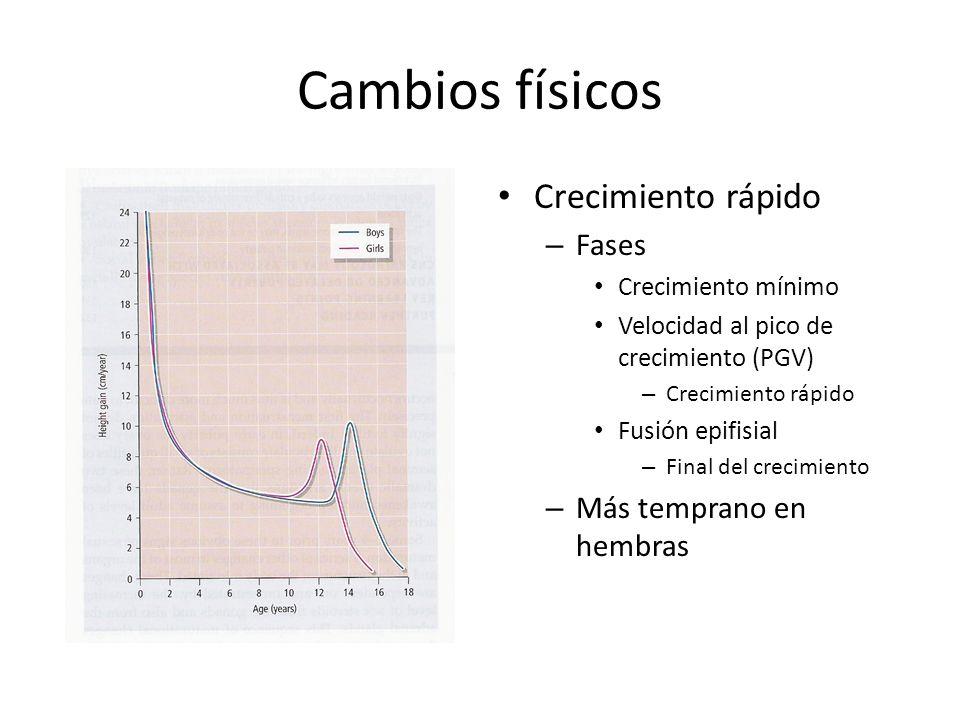 Cambios físicos Crecimiento rápido – Fases Crecimiento mínimo Velocidad al pico de crecimiento (PGV) – Crecimiento rápido Fusión epifisial – Final del crecimiento – Más temprano en hembras