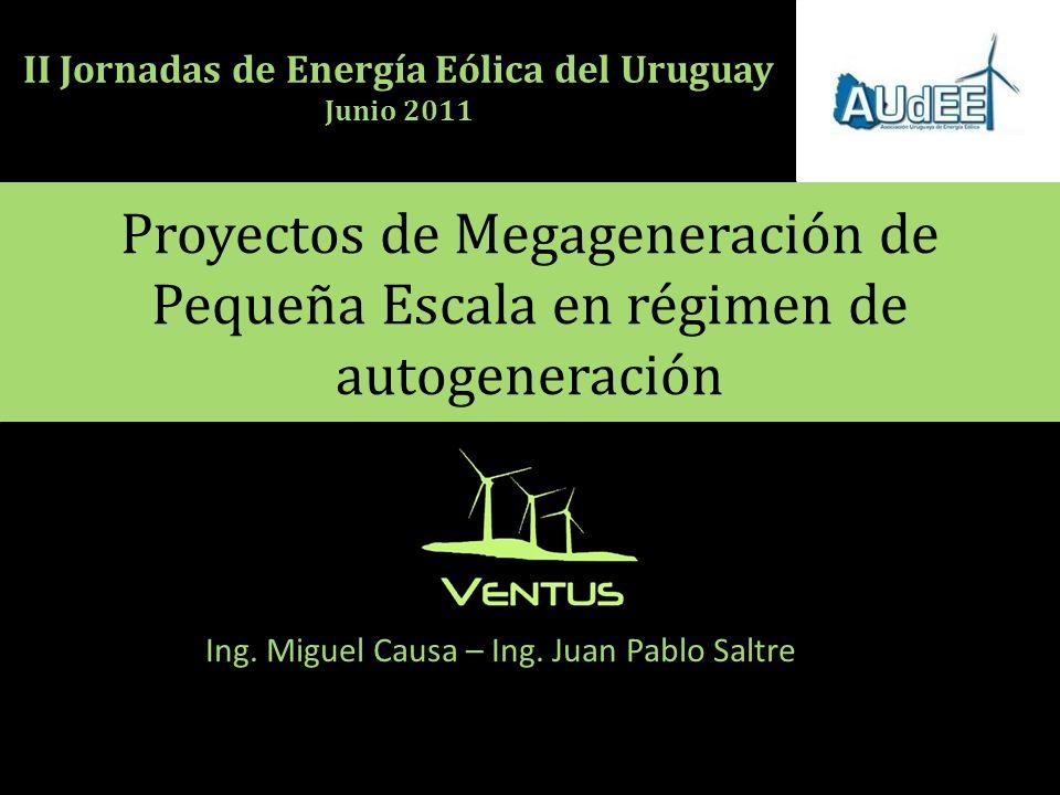 Proyectos de Megageneración de Pequeña Escala en régimen de autogeneración Ing.