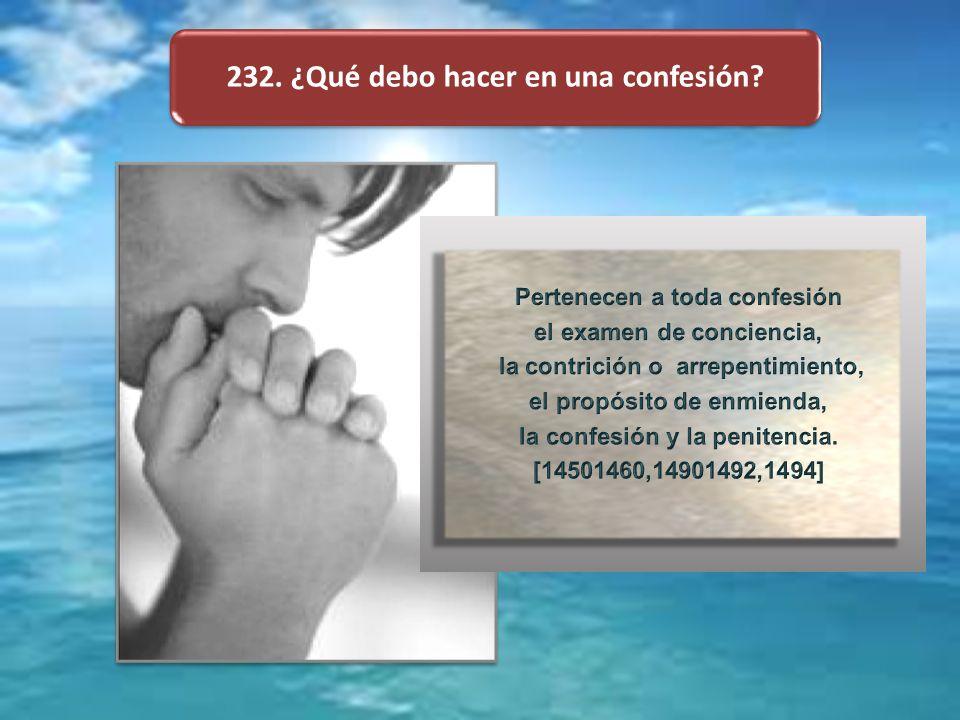 232. ¿Qué debo hacer en una confesión?