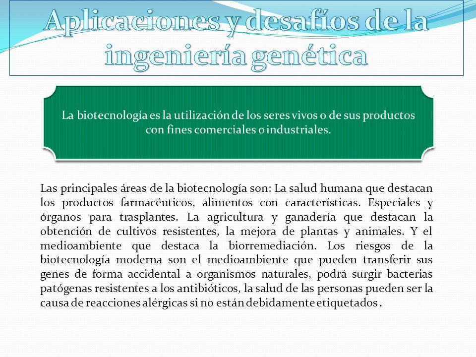 Las principales áreas de la biotecnología son: La salud humana que destacan los productos farmacéuticos, alimentos con características. Especiales y ó