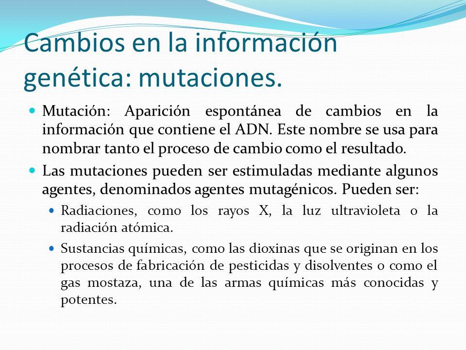 Cambios en la información genética: mutaciones. Mutación: Aparición espontánea de cambios en la información que contiene el ADN. Este nombre se usa pa