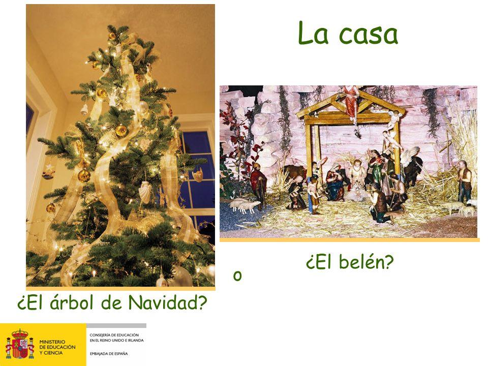 ¿El árbol de Navidad? ¿El belén? La casa o