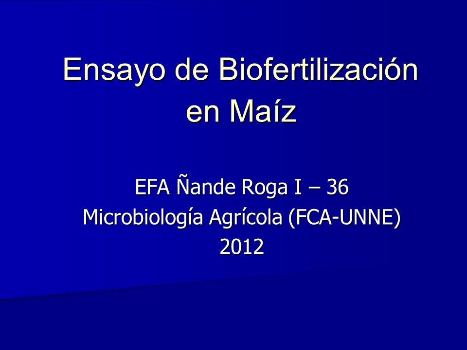 Ensayo de Biofertilización en Maíz EFA Ñande Roga I – 36 Microbiología Agrícola (FCA-UNNE) 2012