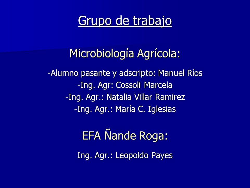 Grupo de trabajo Microbiología Agrícola: -Alumno pasante y adscripto: Manuel Ríos -Ing. Agr: Cossoli Marcela -Ing. Agr.: Natalia Villar Ramirez -Ing.