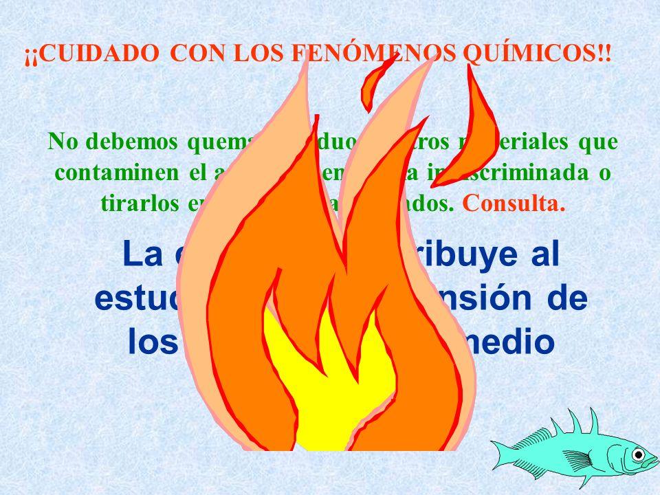La ecología contribuye al estudio y la comprensión de los problemas del medio ambiente. No debemos quemar residuos u otros materiales que contaminen e