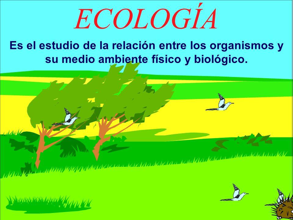 ECOLOGÍA Es el estudio de la relación entre los organismos y su medio ambiente físico y biológico.