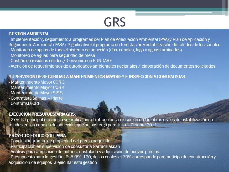 GESTION AMBIENTAL: - Implementación y seguimiento a programas del Plan de Adecuación Ambiental (PAA) y Plan de Aplicación y Seguimiento Ambiental (PAS