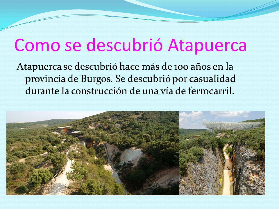 Como se descubrió Atapuerca Atapuerca se descubrió hace más de 100 años en la provincia de Burgos. Se descubrió por casualidad durante la construcción