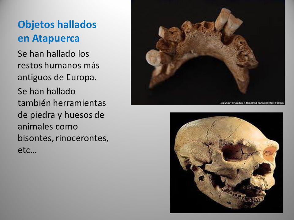Objetos hallados en Atapuerca Se han hallado los restos humanos más antiguos de Europa. Se han hallado también herramientas de piedra y huesos de anim