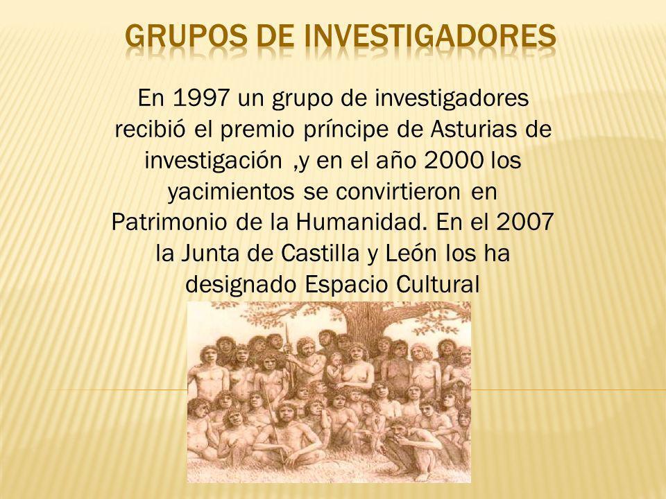 En 1997 un grupo de investigadores recibió el premio príncipe de Asturias de investigación,y en el año 2000 los yacimientos se convirtieron en Patrimo