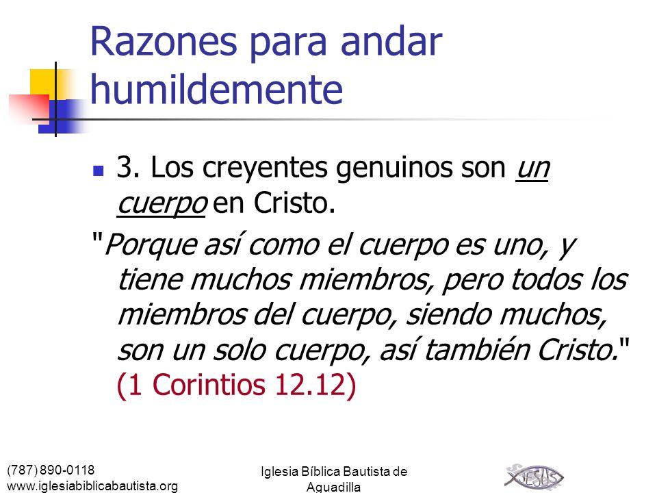 (787) 890-0118 www.iglesiabiblicabautista.org Iglesia Bíblica Bautista de Aguadilla Razones para andar humildemente 3. Los creyentes genuinos son un c