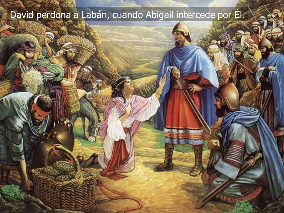 (787) 890-0118 www.iglesiabiblicabautista.org Iglesia Bíblica Bautista de Aguadilla David perdona a Labán, cuando Abigail intercede por Él.