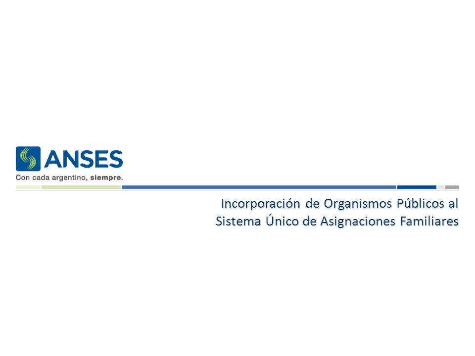Sistema Único de Asignaciones Familiares SUAF Sistema Único de Asignaciones Familiares SUAF SUAF Las Asignaciones Familiares son abonadas en forma directa por ANSES