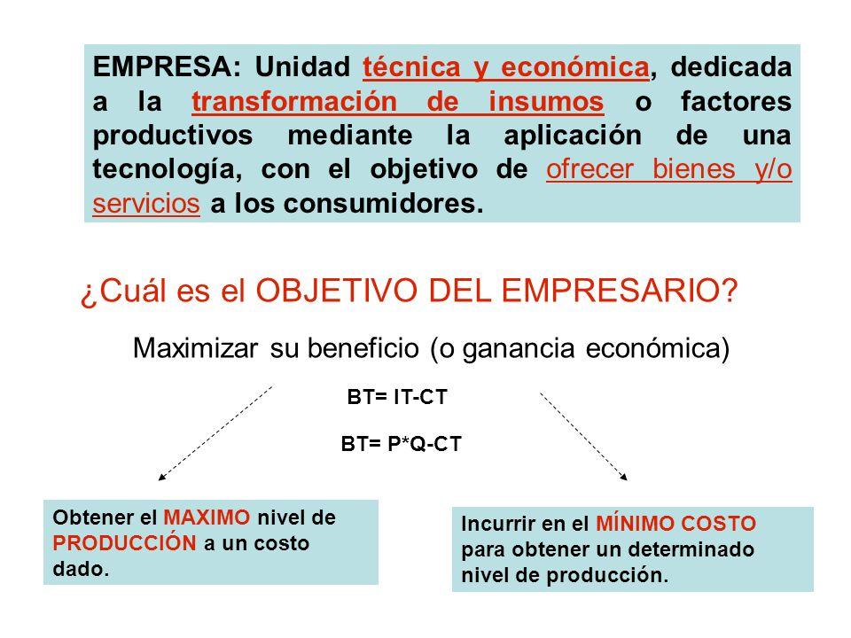 TEORÍA DE LA EMPRESA Cómo organiza eficientemente los recursos para cumplir con su objetivo TEORÍA DE LA PRODUCCION TEORIA DE LOS COSTOS TEORÍA DE LA ORGANIZACIÓN EMPRESARIAL Se estudia la TECNOLOGÍA de producción de la empresa Cómo a partir de factores de producción las empresas obtienen PRODUCTOS Y / O SERVICIOS Cómo varían los Costos Económicos al variar el nivel de producción y/o el precios de los factores Cómo se organiza la empresa
