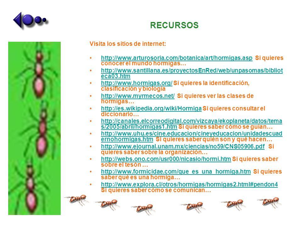 RECURSOS Visita los sitios de internet: http://www.arturosoria.com/botanica/art/hormigas.asp Si quieres conocer el mundo hormigas…http://www.arturosor