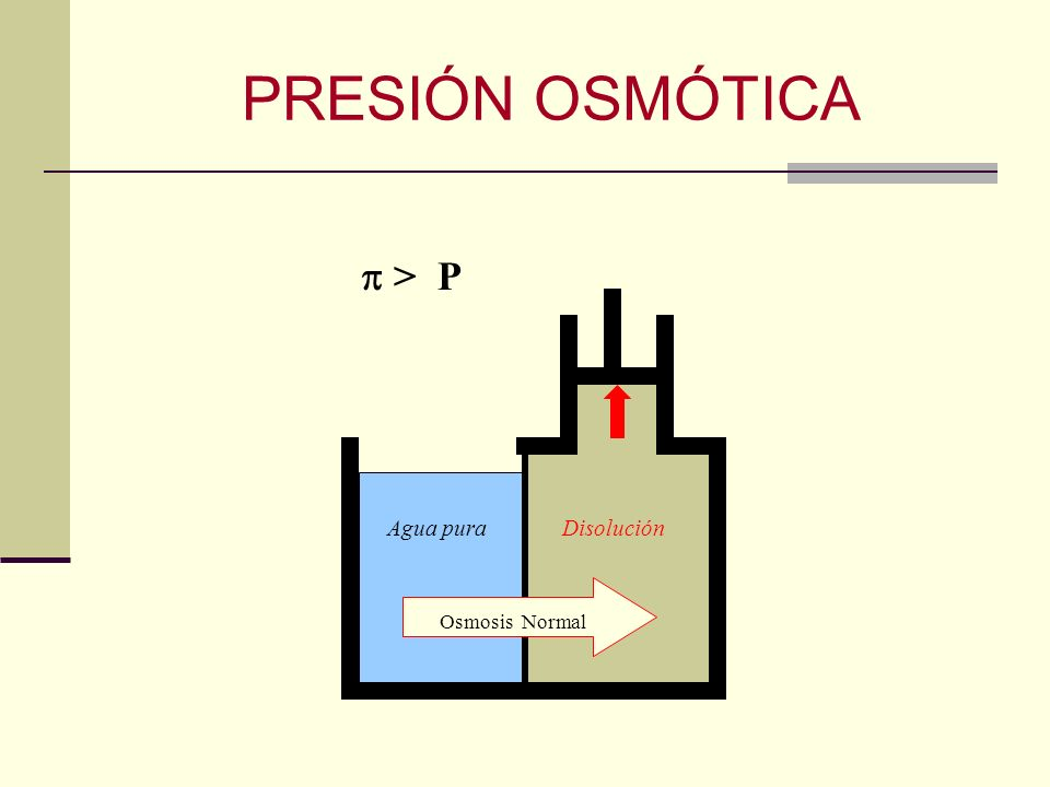 PRESIÓN OSMÓTICA Osmosis Normal Agua puraDisolución > P