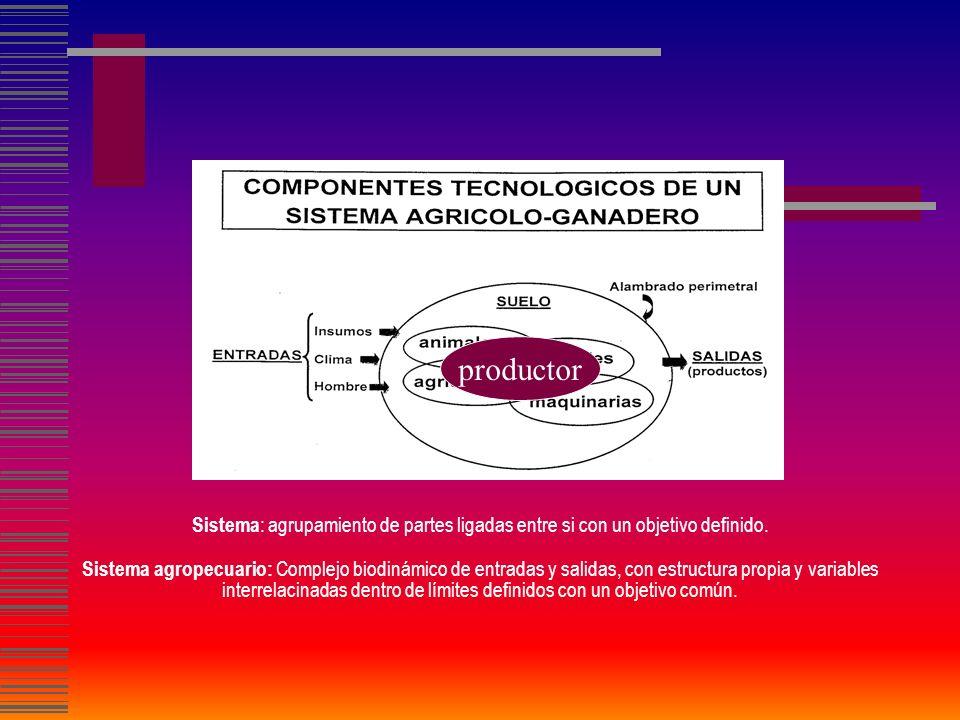 El enfoque de sistemas aplicado a la actividad agropecuaria sistema productivo Objeto de estudio sistema familia-explotación