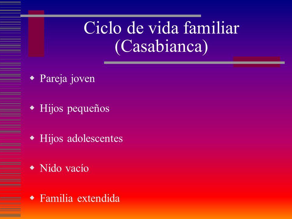 Ciclo de vida familiar (Casabianca) Pareja joven Hijos pequeños Hijos adolescentes Nido vacío Familia extendida