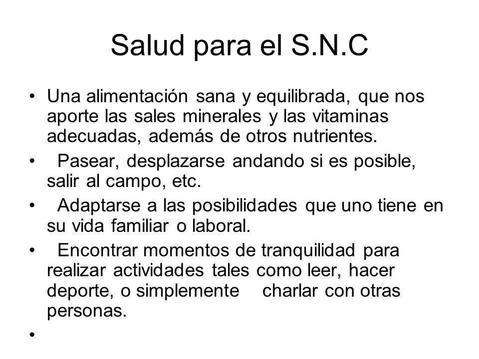 Salud para el S.N.C Una alimentación sana y equilibrada, que nos aporte las sales minerales y las vitaminas adecuadas, además de otros nutrientes. Pas