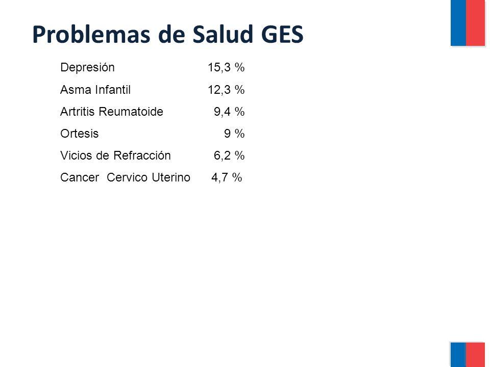 Depresión 15,3 % Asma Infantil 12,3 % Artritis Reumatoide 9,4 % Ortesis 9 % Vicios de Refracción 6,2 % Cancer Cervico Uterino 4,7 %