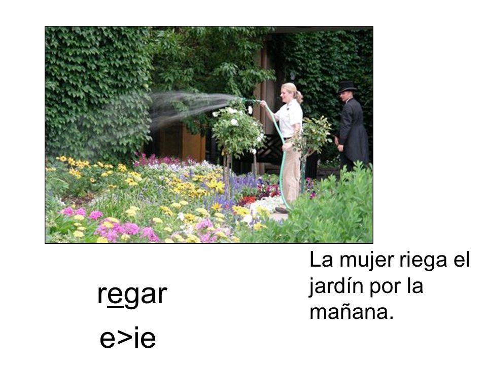 regar La mujer riega el jardín por la mañana. e>ie