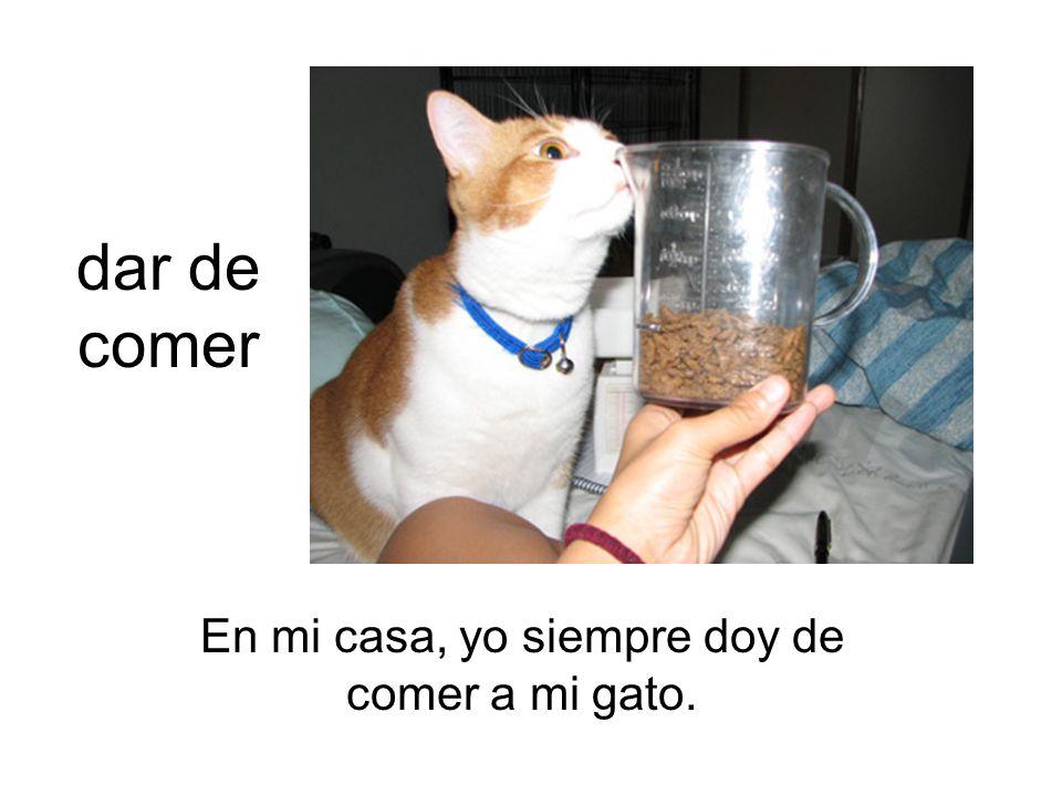 dar de comer En mi casa, yo siempre doy de comer a mi gato.