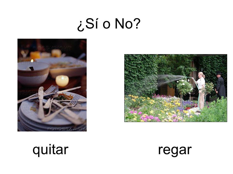 ¿Sí o No? quitarregar