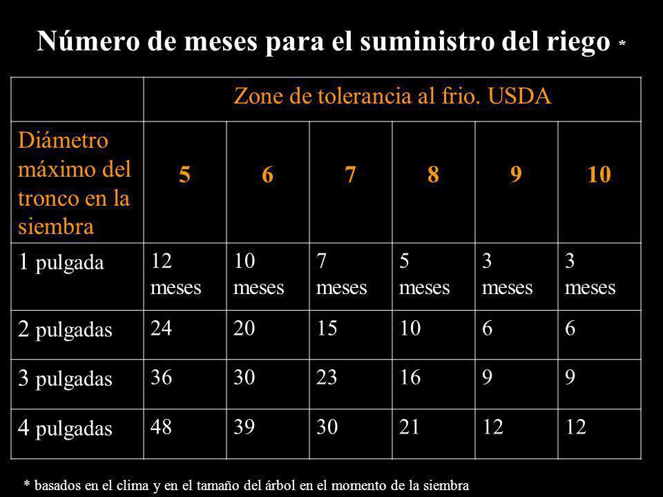Número de meses para el suministro del riego * Zone de tolerancia al frio. USDA Diámetro máximo del tronco en la siembra 5678910 1 pulgada 12 meses 10