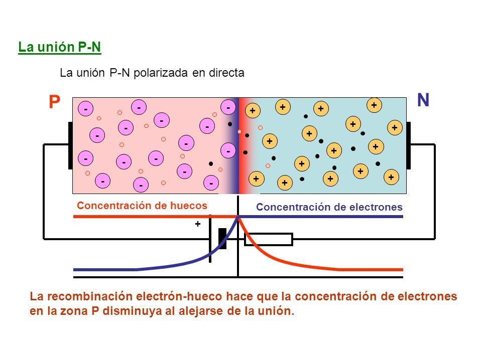 La unión P-N La unión P-N polarizada en directa - - - - - - - - + + + + + + + - - - - + + + + - - - - + + + + + La recombinación electrón-hueco hace que la concentración de electrones en la zona P disminuya al alejarse de la unión.