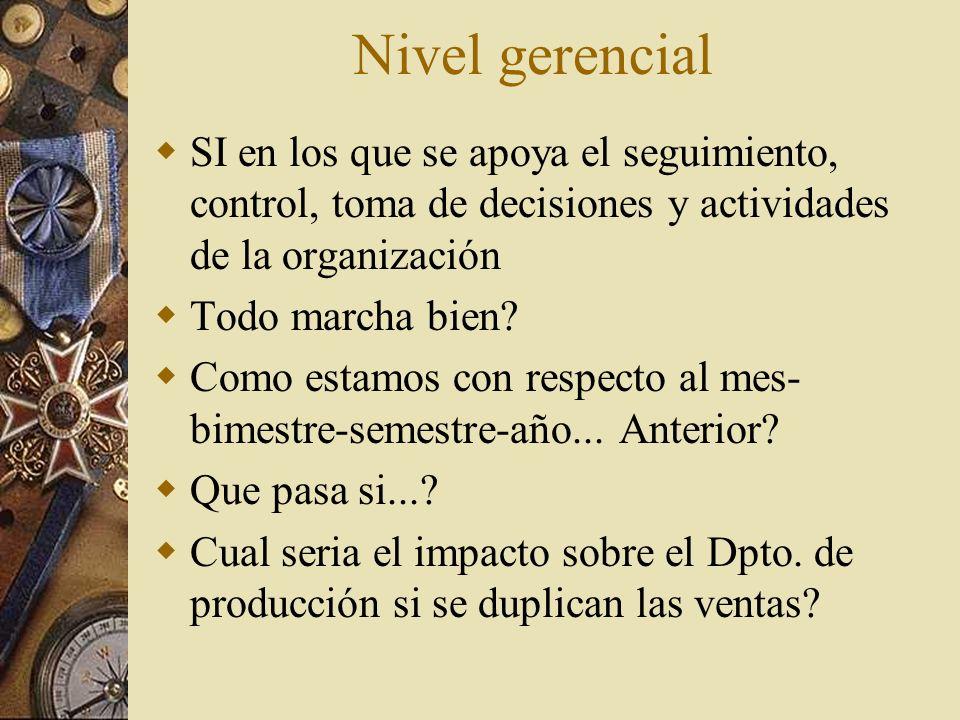 Nivel estratégico SI que apoyan a las actividades de plantación a largo plazo de los niveles de dirección de la institución.