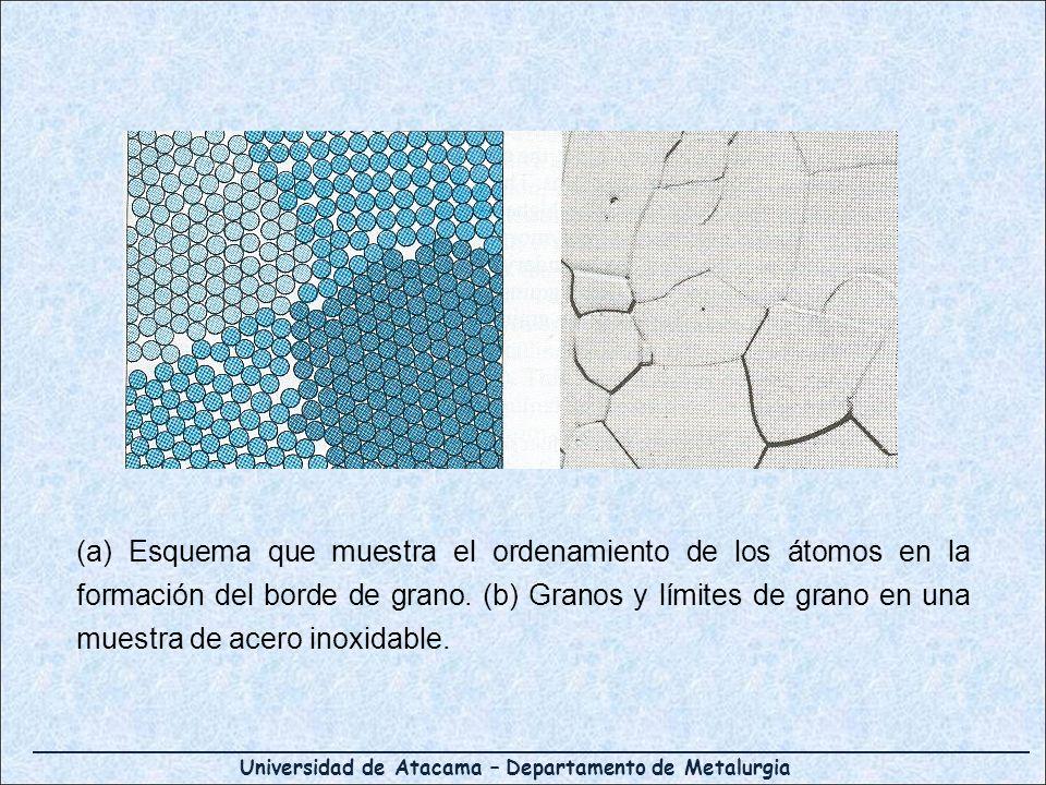 Universidad de Atacama – Departamento de Metalurgia (a) Esquema que muestra el ordenamiento de los átomos en la formación del borde de grano. (b) Gran