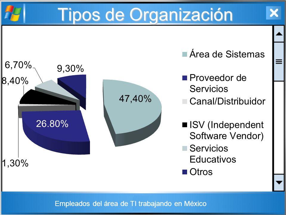 Tipos de Organización Empleados del área de TI trabajando en México
