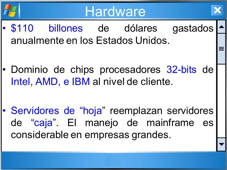Hardware $110 billones de dólares gastados anualmente en los Estados Unidos. Dominio de chips procesadores 32-bits de Intel, AMD, e IBM al nivel de cl