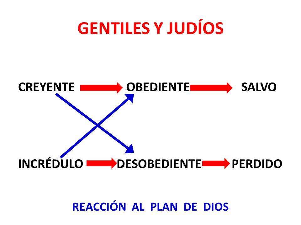 GENTILES Y JUDÍOS CREYENTE OBEDIENTE SALVO INCRÉDULO DESOBEDIENTE PERDIDO REACCIÓN AL PLAN DE DIOS