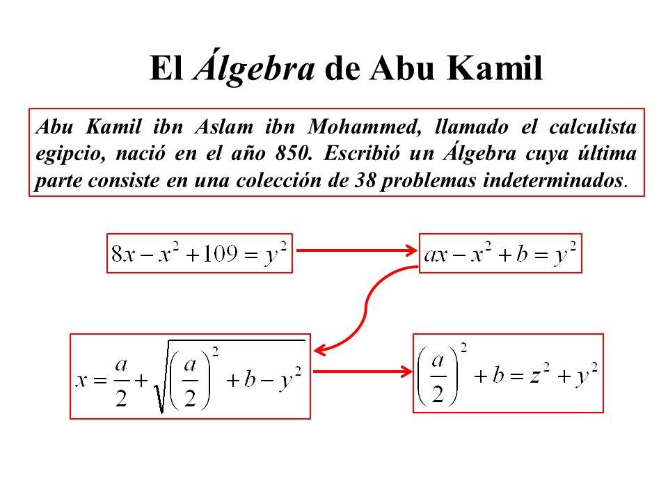 Abu Kamil ibn Aslam ibn Mohammed, llamado el calculista egipcio, nació en el año 850. Escribió un Álgebra cuya última parte consiste en una colección