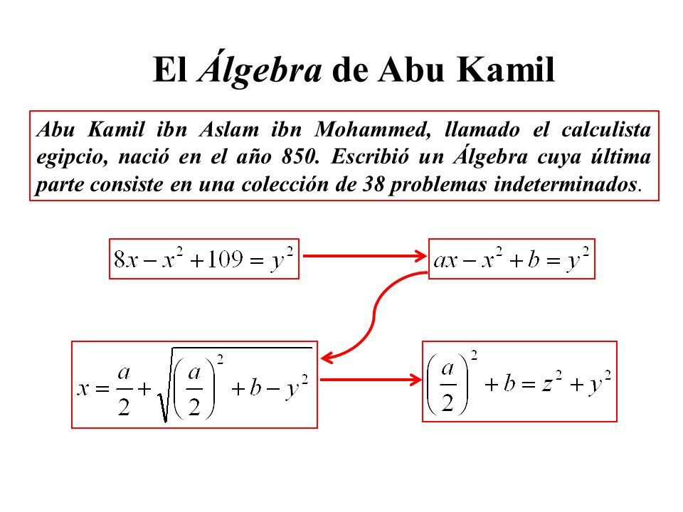 Abu Kamil ibn Aslam ibn Mohammed, llamado el calculista egipcio, nació en el año 850.