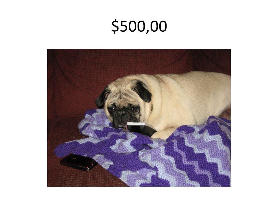 $500,00