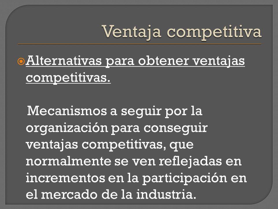 Alternativas para obtener ventajas competitivas. Mecanismos a seguir por la organización para conseguir ventajas competitivas, que normalmente se ven