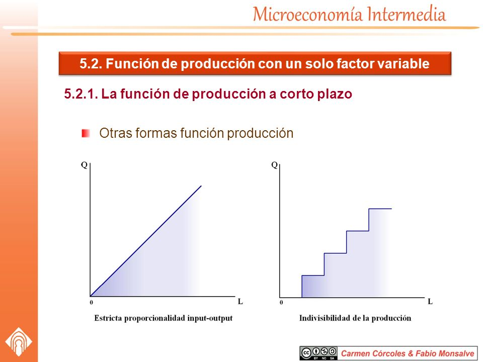 5.2. Función de producción con un solo factor variable 5.2.1. La función de producción a corto plazo Otras formas función producción
