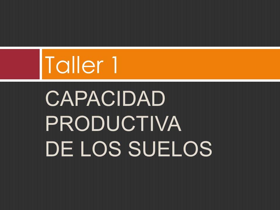 CAPACIDAD PRODUCTIVA DE LOS SUELOS Taller 1