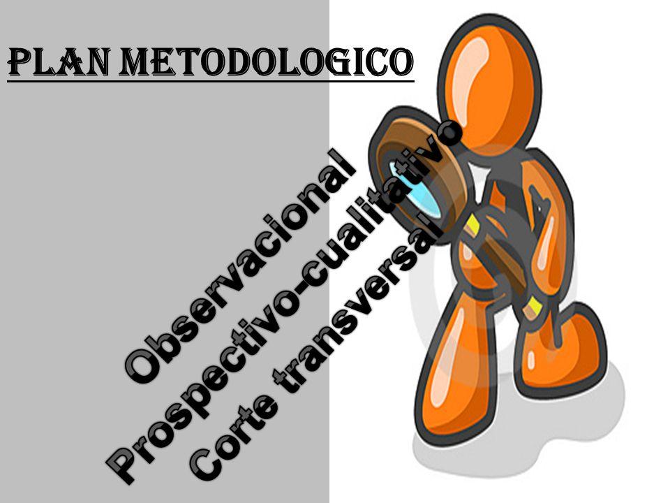 PLAN METODOLOGICO