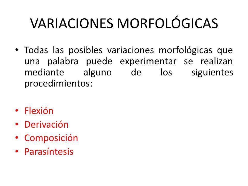 VARIACIONES MORFOLÓGICAS Todas las posibles variaciones morfológicas que una palabra puede experimentar se realizan mediante alguno de los siguientes