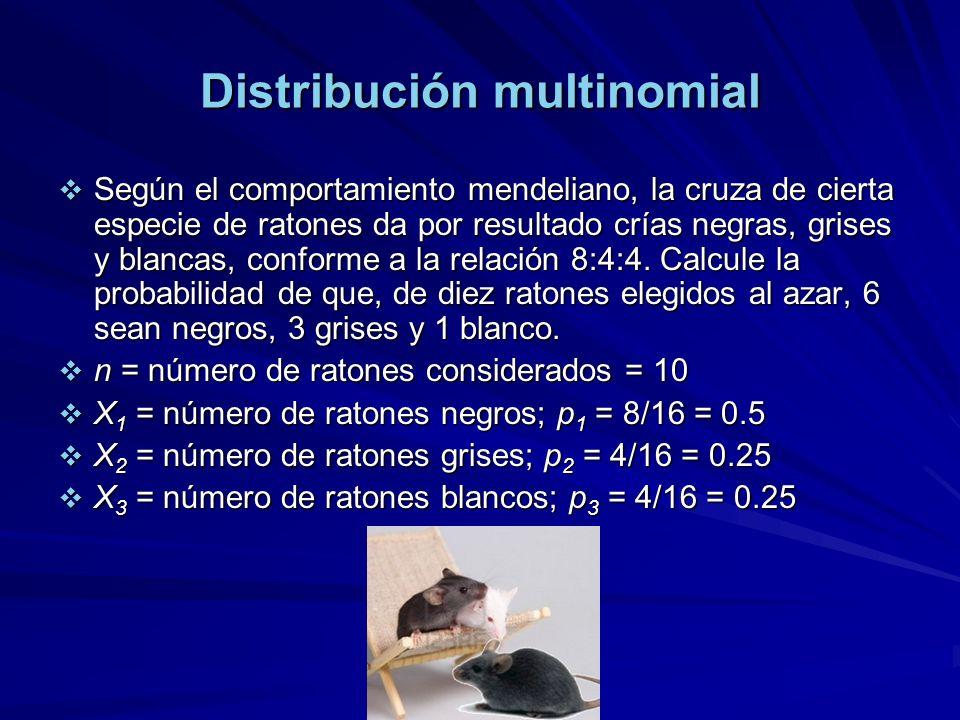 Distribución multinomial Según el comportamiento mendeliano, la cruza de cierta especie de ratones da por resultado crías negras, grises y blancas, conforme a la relación 8:4:4.