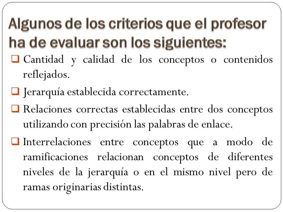 Cantidad y calidad de los conceptos o contenidos reflejados.
