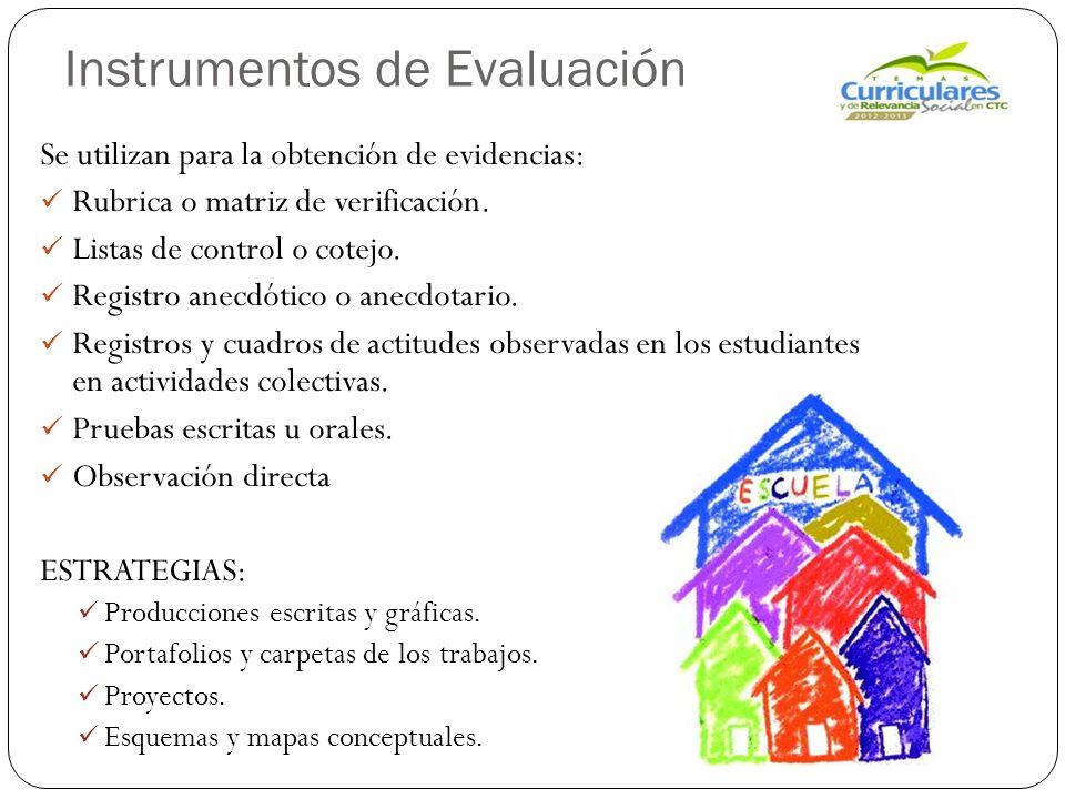 Instrumentos de Evaluación Se utilizan para la obtención de evidencias: Rubrica o matriz de verificación.