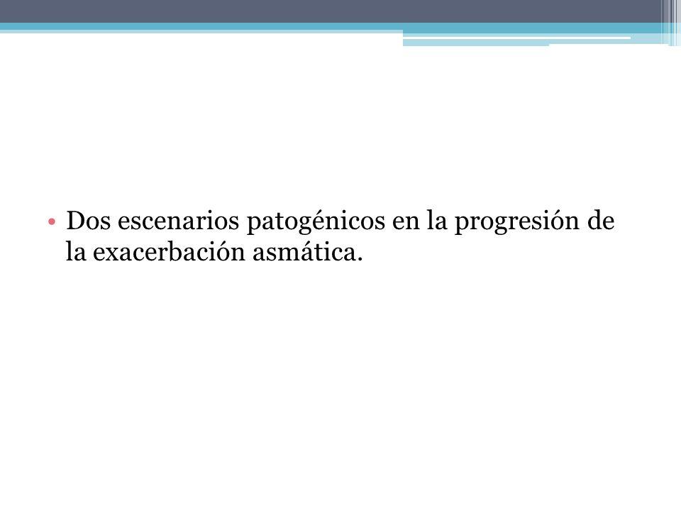 Dos escenarios patogénicos en la progresión de la exacerbación asmática.